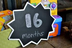 16-meses